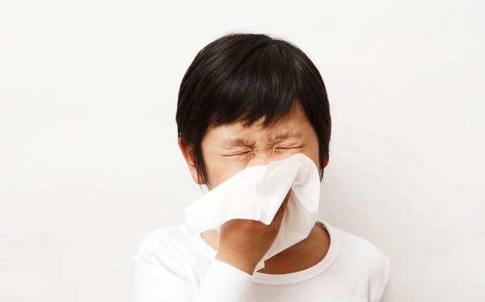 腸内細菌とアレルギー