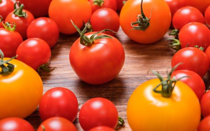 家庭で簡単に作れる!万能発酵食品・トマト麹とは?