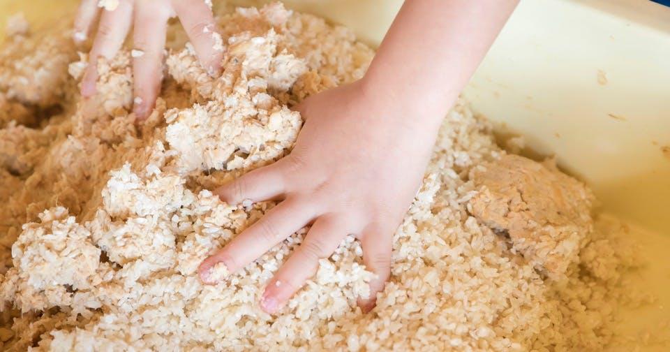 今年は大豆で作る「発酵食品」を自由研究にしてみませんか?