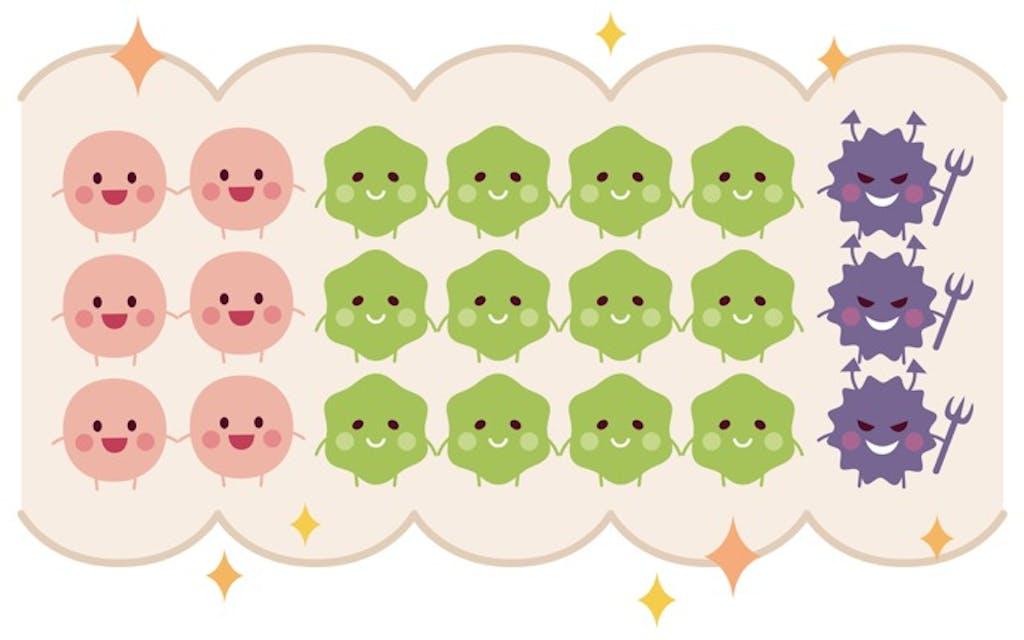 腸内フローラを整えるにはどちらを選ぶ?「ビフィズス菌と乳酸菌」編