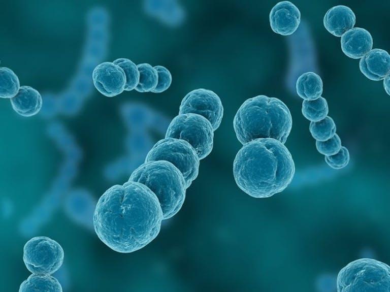 子どもの、のどの痛みの原因に!「溶連菌」とその感染症とは?