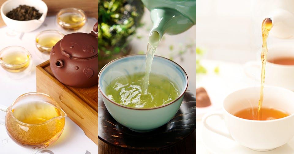 """""""発酵""""で作られるお茶があるって本当?〜不発酵茶と発酵茶〜"""