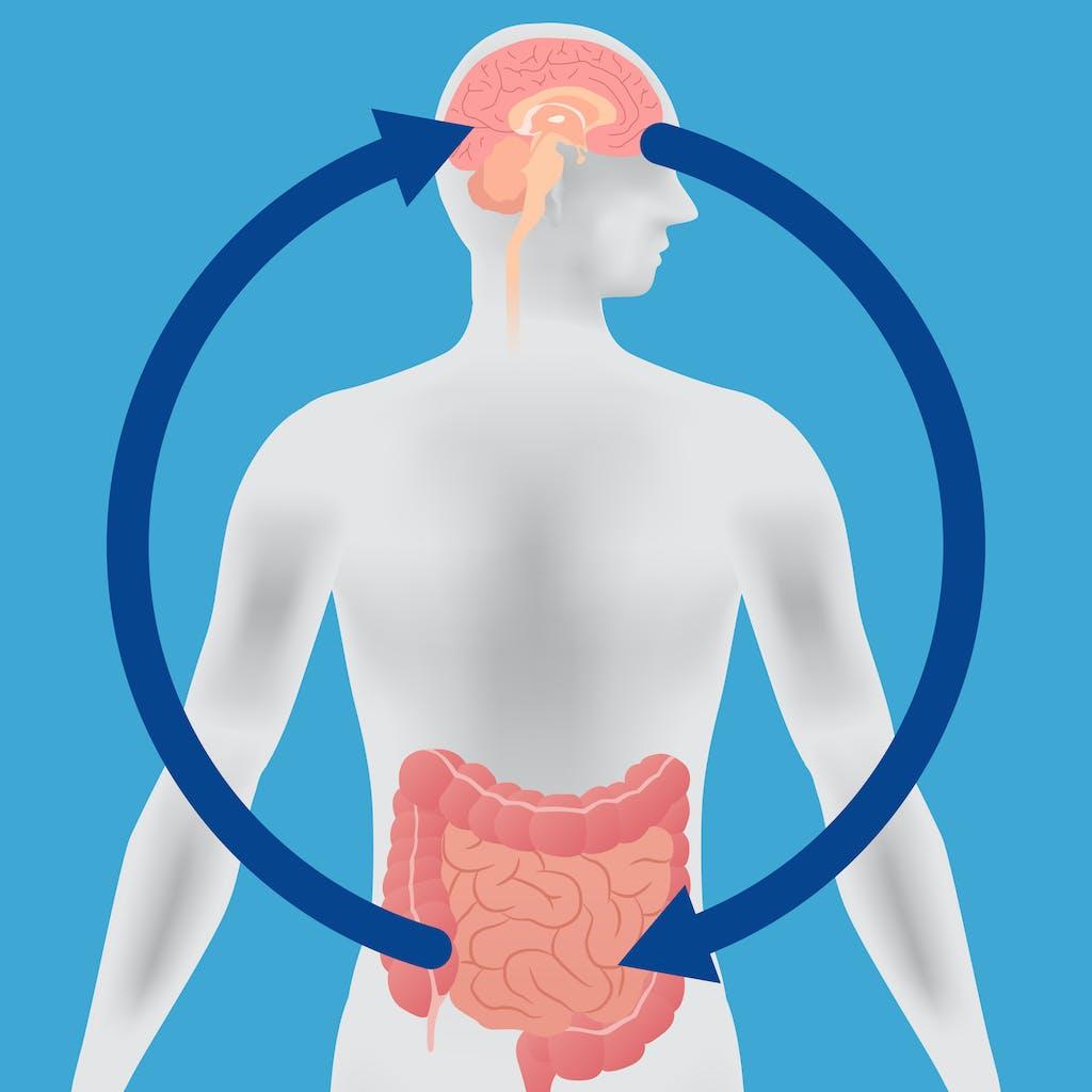 腸内環境を改善するとメンタルに好影響が!? その理由は「腸脳相関」にある!