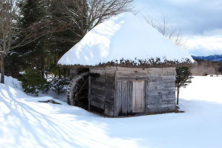 winter-festival-4