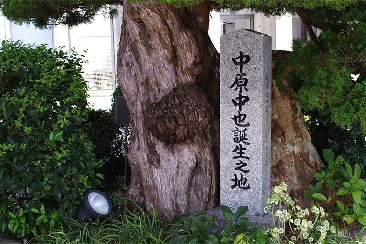 toyo-nakahara