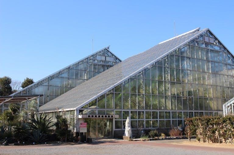 冬でもぬくぬく!植物の緑に癒やされる「植物園ドライブ」はいかが?