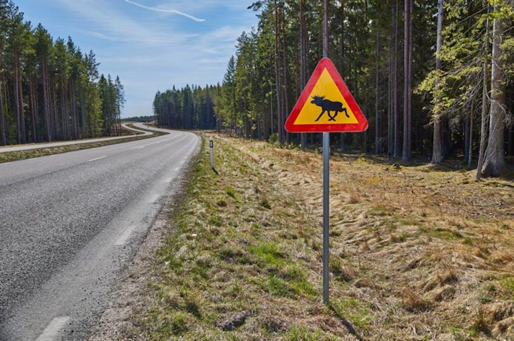 「親指マークに取り消し線」の意味は?海外の変わった道路標識