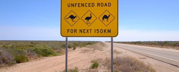 オーストラリアの「動物の標識」にはどんな動物が?そしてその理由は…